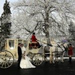 Princess Wedding Carriage