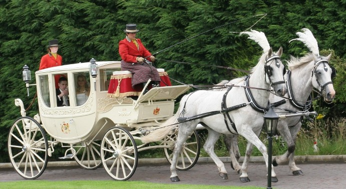 Semi-State Princess Wedding Carriage