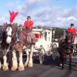 Semi-State Princess Wedding Carriage