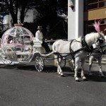 Fairy Tale Carriage